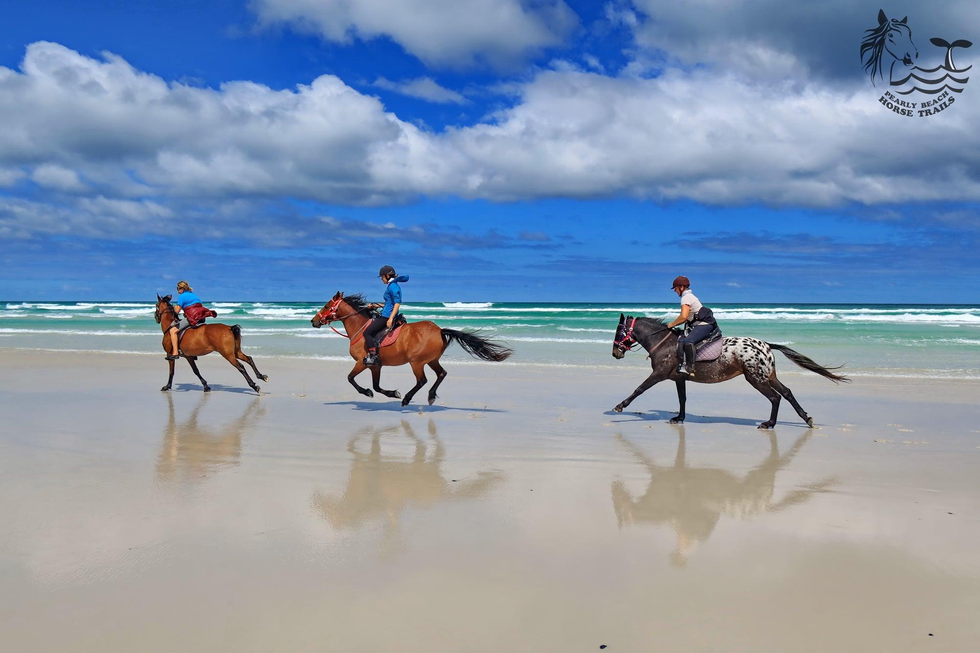 Pearly Beach Horse Trails via Facebook
