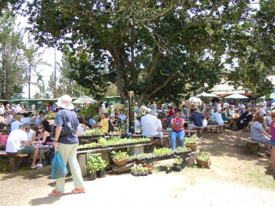 Harkerville Market via Facebook