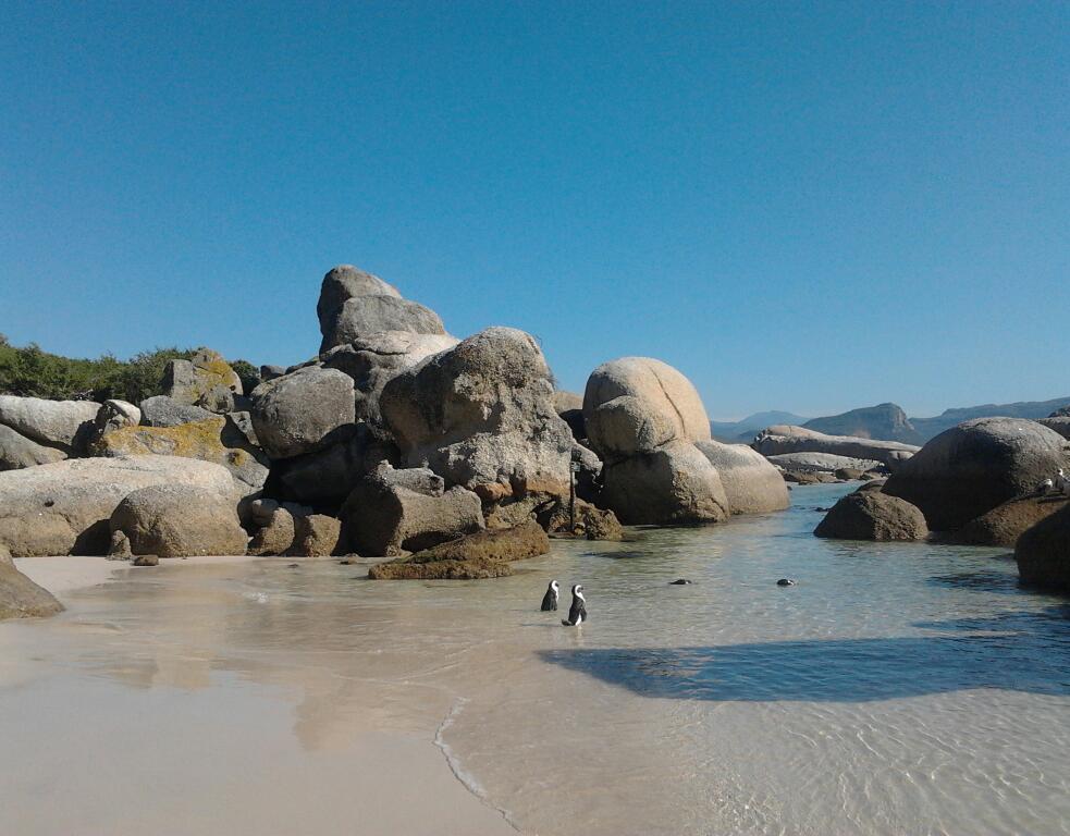 boulders-beach-tamlyn-amber-wanderlust