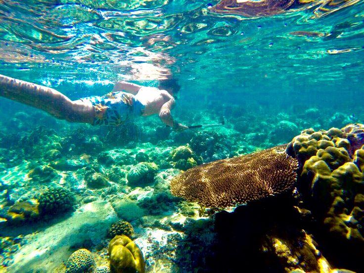 591116913f06ce28b49d8dc33e1a8baa--mozambique-snorkeling