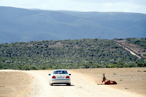 www.drivesouthafrica.co.za