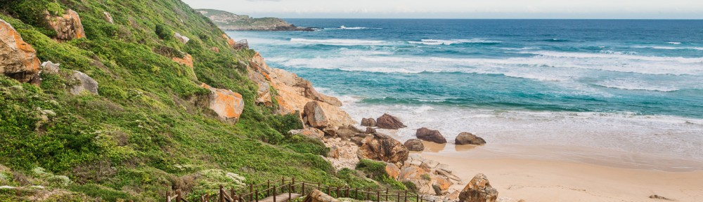 Top 20 activities in Plettenberg Bay 2017.