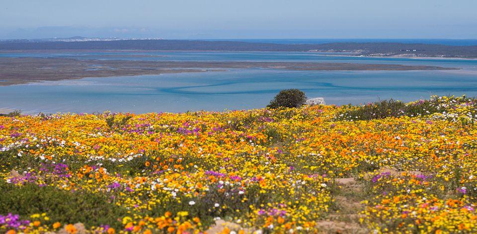 www.southafrica.net