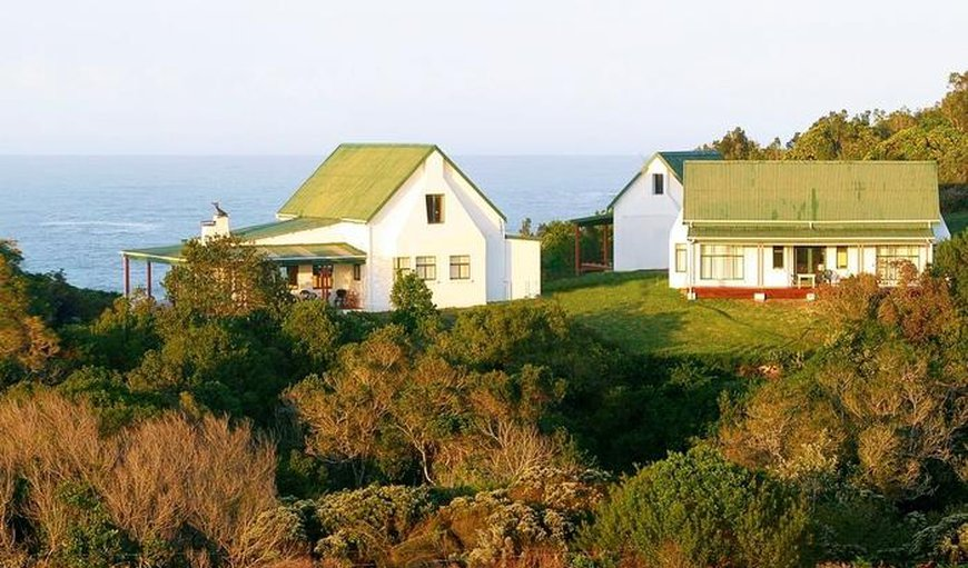 Welcome to Bishops Cove in Tsitsikamma, Eastern Cape, South Africa