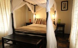 Thornhill Safari Lodge image