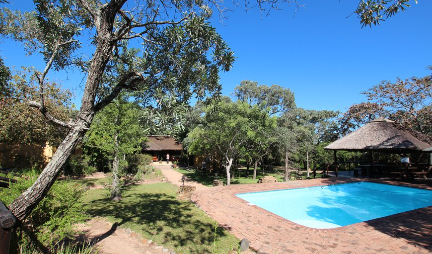 Welcome to Thornhill Safari Lodge in Hoedspruit, Limpopo, South Africa