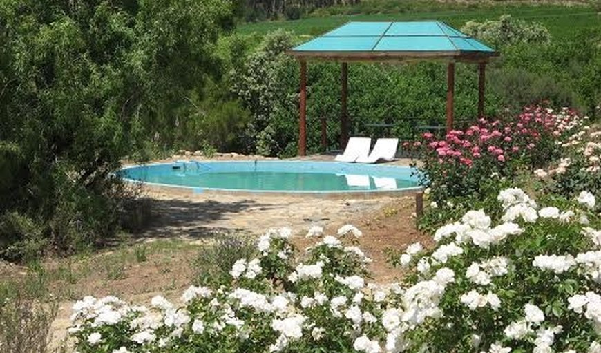 Keisie Cottages - Pool in Montagu, Western Cape , South Africa