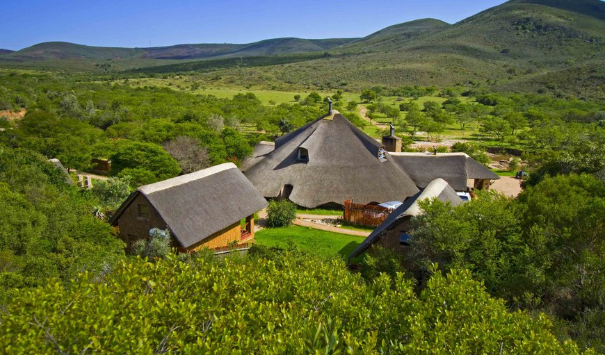 Nyaru Game Lodge - Garden Route Safaris in Mossel Bay, Western Cape , South Africa