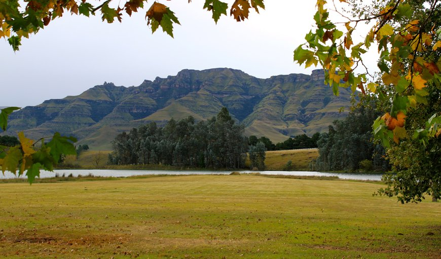 Welcome to Stoneyhall Farm. in Underberg, KwaZulu-Natal, South Africa