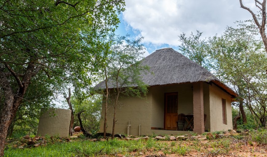Exterior of Shikwari Baobab, Jackelberry, Leadwood and Marula Suites. All connected by pathways to the Main Shikwari area.