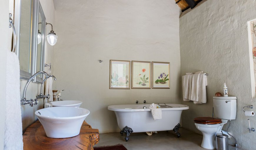 Wild Fig Family Bathroom