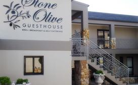 Stone Olive Guest House image