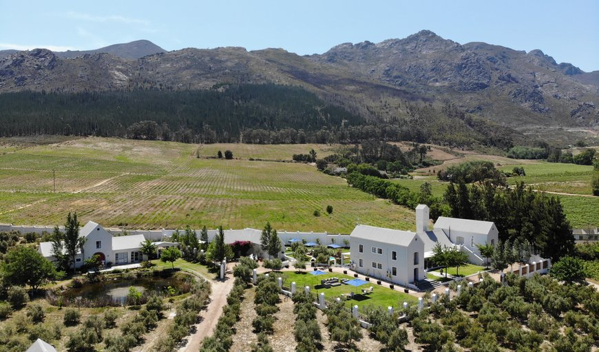 Gooding's Groves Guesthouse in Franschhoek, Western Cape , South Africa