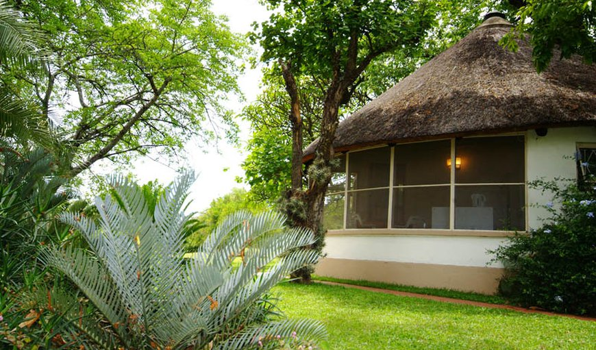 Welcome to Kiaat Bungalows in Hazyview, Mpumalanga, South Africa