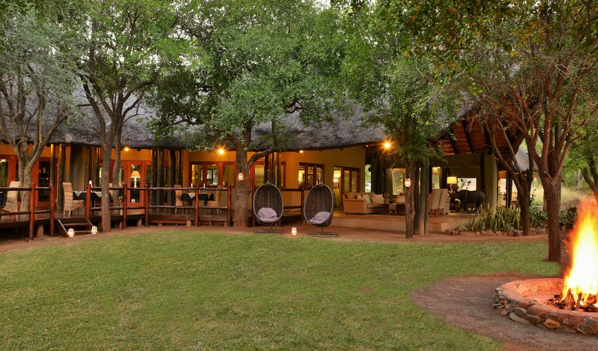 Welcome to Black Rhino Game Lodge in Pilanesberg, North West Province, South Africa