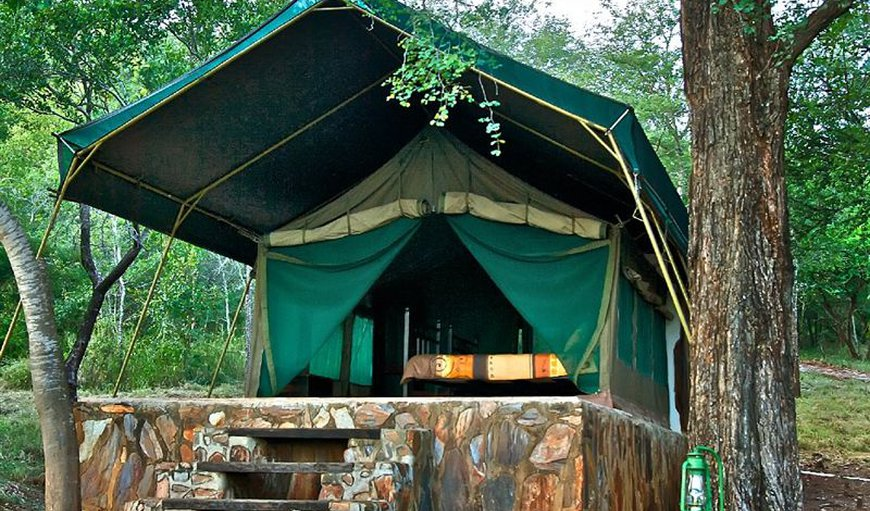 Bukisa's Camp in Gravelotte, Limpopo, South Africa