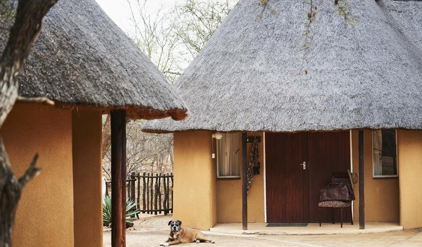 Welcome to Stevensford Game Reserve in Tuli Block , Central District , Botswana