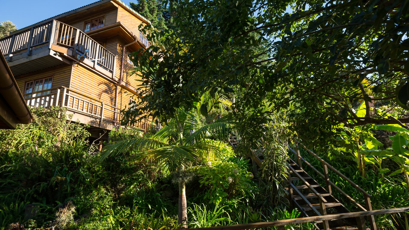 Picture of: The Big Tree House Lodge In Upper Old Place Knysna Best Price Guaranteed