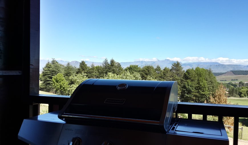 View from deck area, which has a gas braai for easy meals.