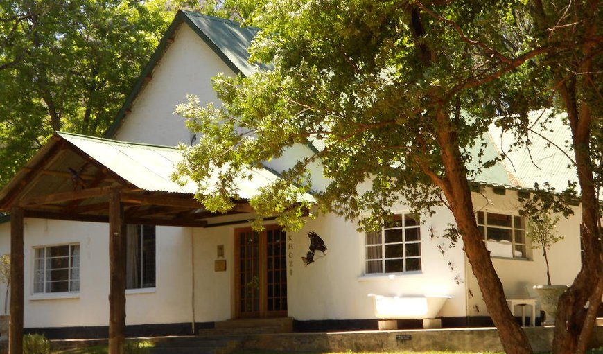Drakensberg Bush Lodge in Winterton, KwaZulu-Natal , South Africa