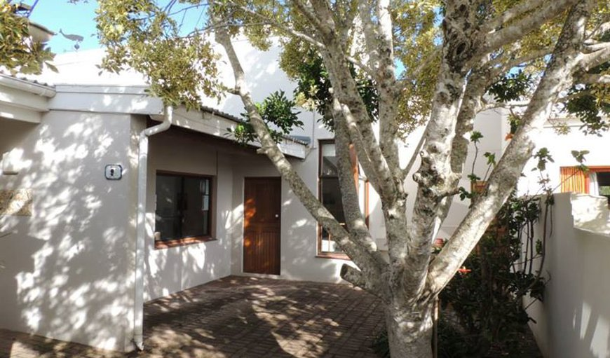 African Array Backpackers Lodge in Plettenberg Bay, Western Cape , South Africa