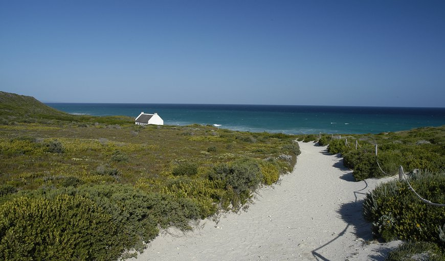 Koppie Alleen in De Hoop Nature Reserve, Western Cape , South Africa