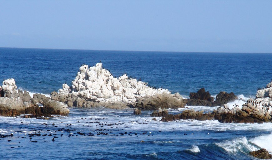 Die Rotse or The Rocks are your view from both apartments. in Kleinmond, Western Cape , South Africa