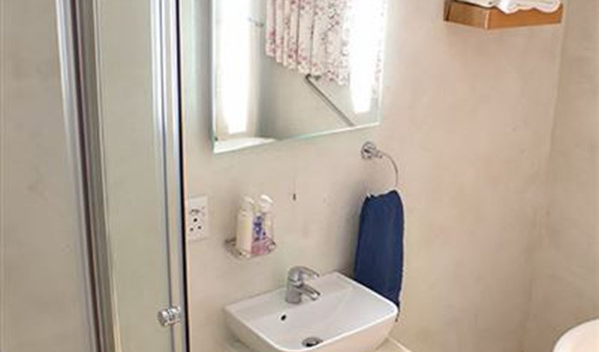 Shower in full bathroom with antique bath