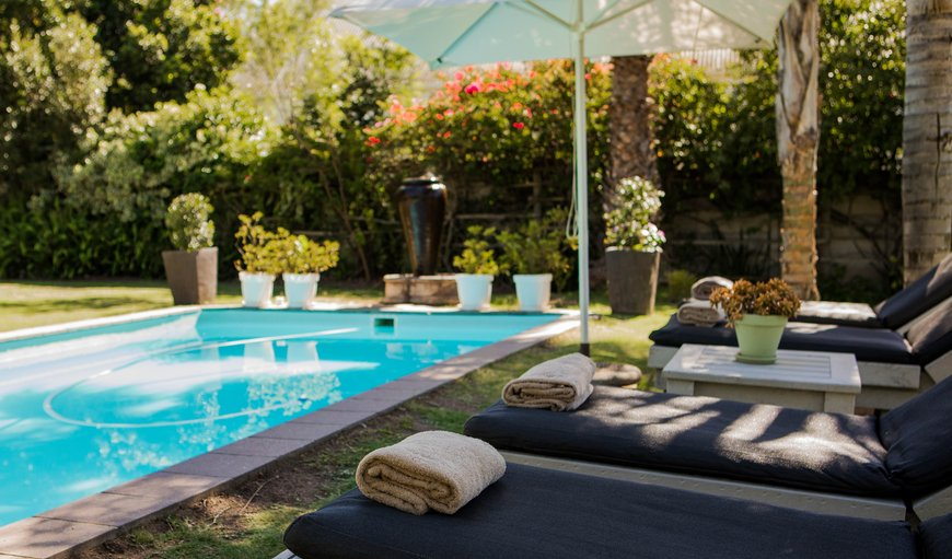 Lounges surrounding swimming pool for guests to unwind and enjoy the sun