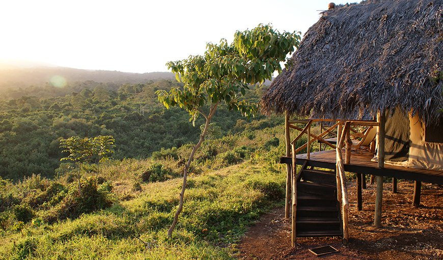 Crater Forest Tented Camp in Ngorongoro Conservation Area, Tanzania, Tanzania, Tanzania