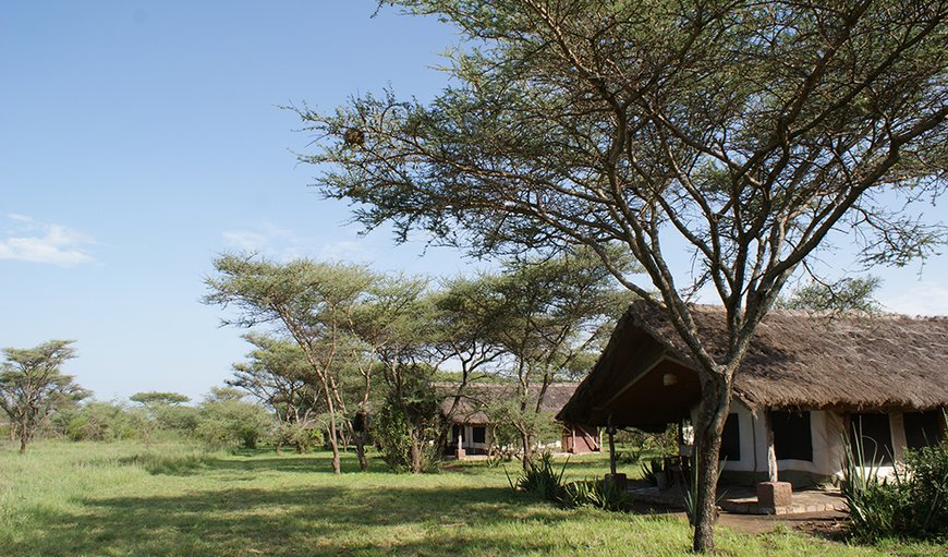 Ikoma Tented Camp in Serengeti National Park, Tanzania, Tanzania, Tanzania