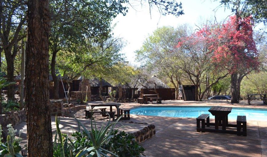 Cabin Bedrooms around the pool area in Thabazimbi, Limpopo, South Africa