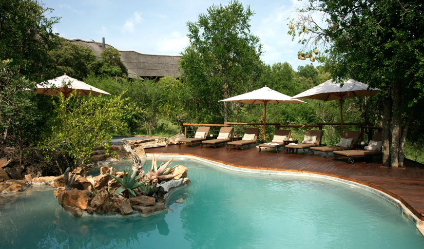 Impodimo Game Lodge in Madikwe Reserve, North West Province, South Africa