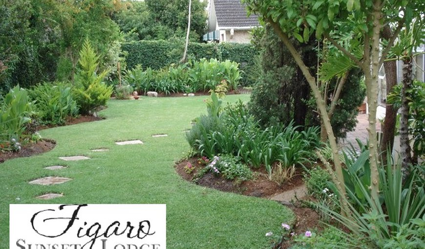 Figaro Sunset Lodge in Constantia, Cape Town, Western Cape , South Africa