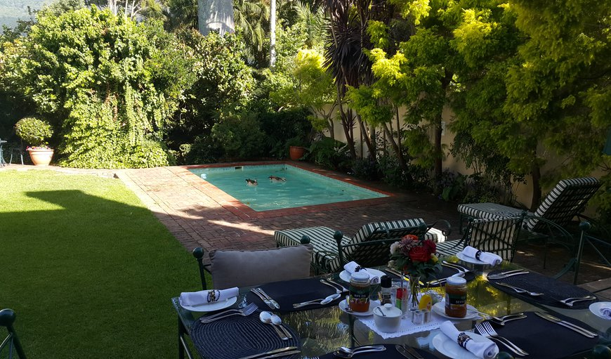 Breakfast by the pool