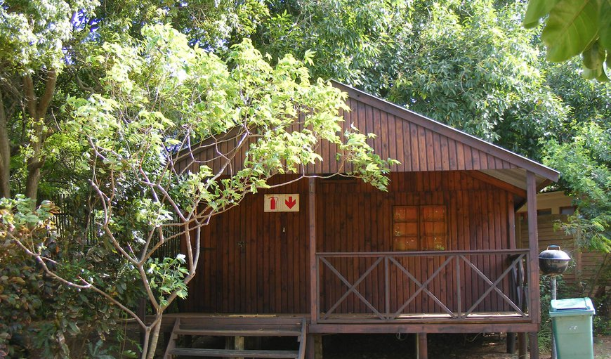 Accommodation at Bluff Eco Park