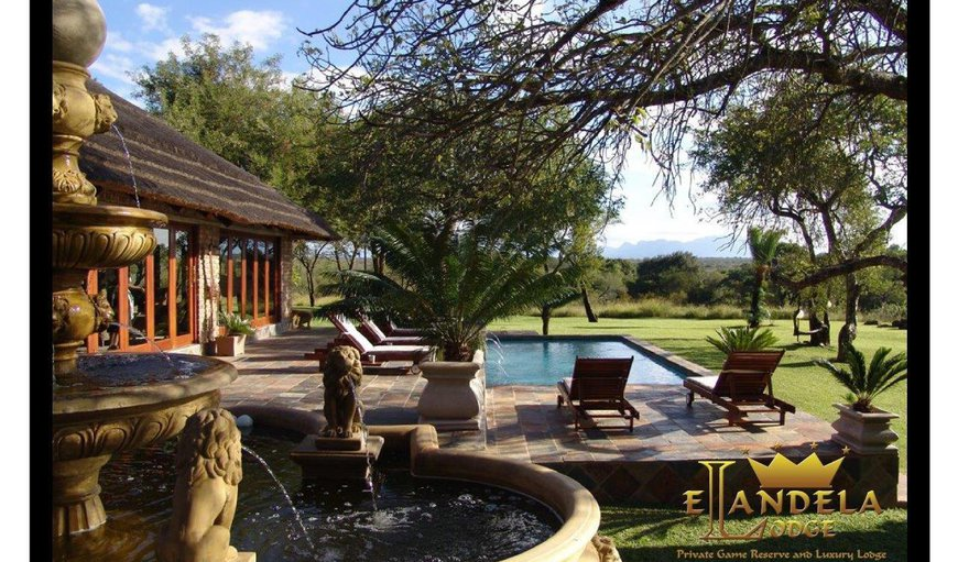 Elandela Luxury Lodge & Private Game Reserve in Hoedspruit, Limpopo, South Africa