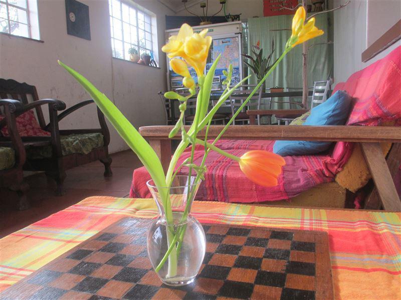 Malleson Garden Cottage Verified Listing