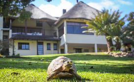 Winelands Villa Guesthouse & Cottages image