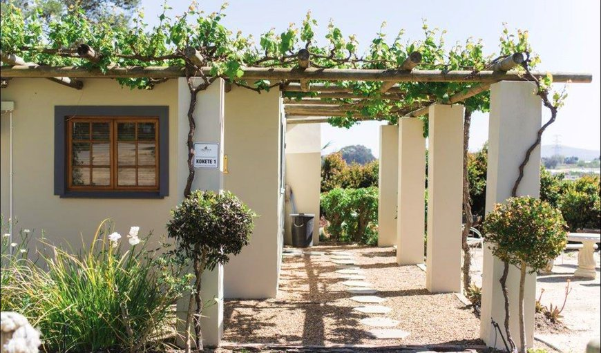 Welcome to Kokote Self Catering Unit in Stellenbosch, Western Cape, South Africa