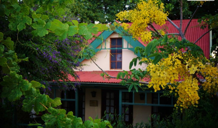 Petal Faire Cottage in Colbyn , Pretoria (Tshwane), Gauteng, South Africa