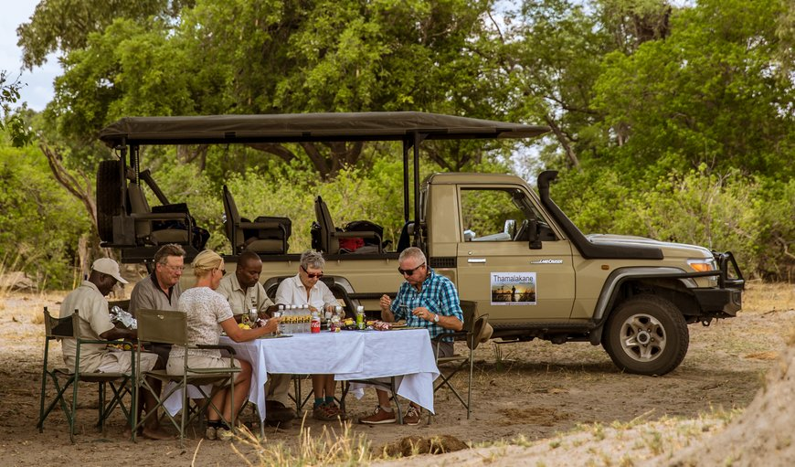 Game drive in the Moremi Game reserve.