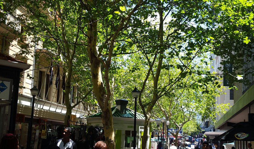 Leafy St George s Mall
