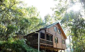 Forest Bird Lodge image