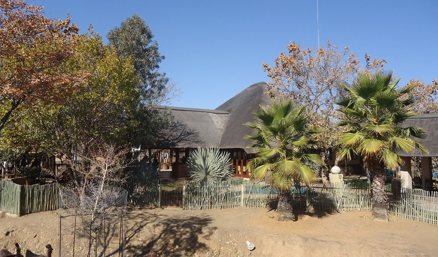 Didingwe Bush Lodge in Bela Bela (Warmbaths), Limpopo, South Africa
