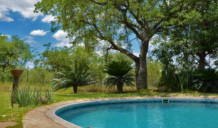 Tingala Lodge And Safaris in Phalaborwa, Limpopo, South Africa