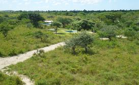 Umdobi Bush Camp image
