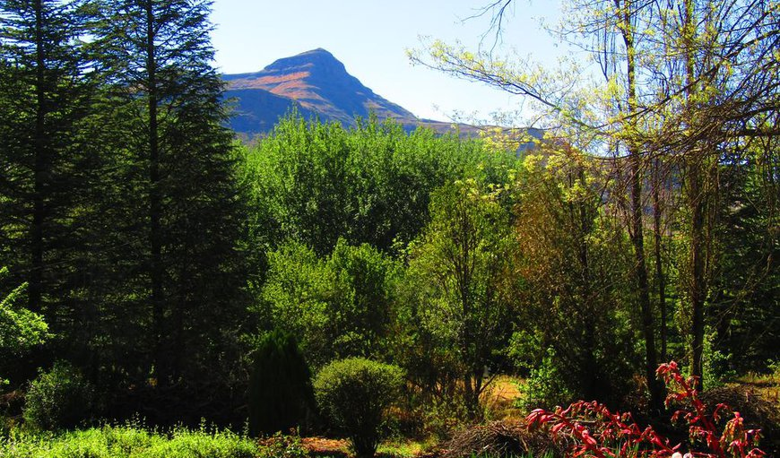Woodlands Retreat- Surrounded by inspiring sandstone mountains, secluded amongst woodland trees and nestled in a lush garden, this peaceful venue is ideal for rest and relaxation in Clarens, Free State Province, South Africa