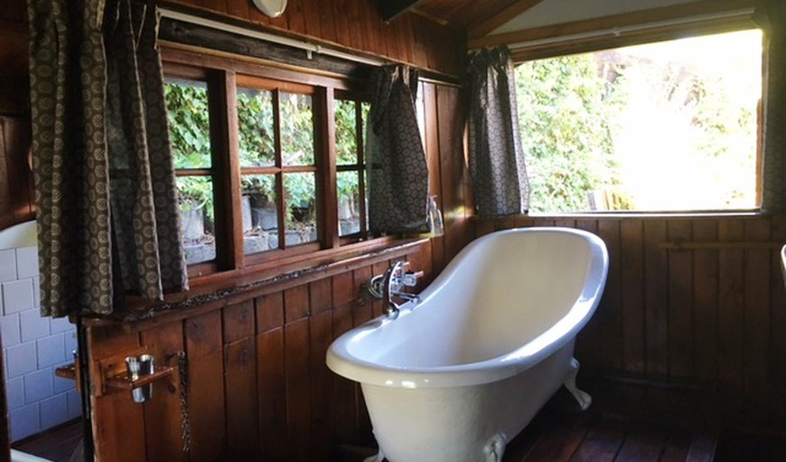 The twin bedded I Khaya forest cabin has a romantic slipper bath and hand held shower.