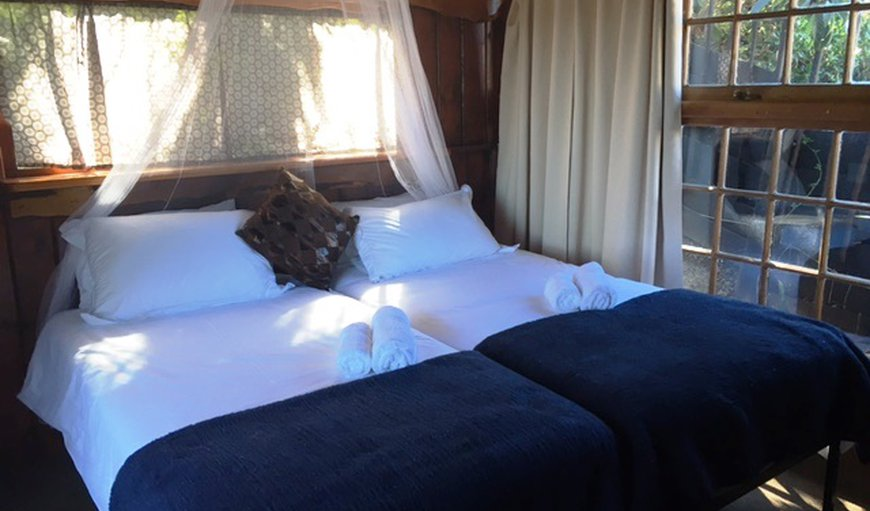 Slightly elevated over looking the jungle like courtyard gardens Ingwe has twin beds and a Victorian slipper bath en suite with hand held shower.  This cabin has a lovely private deck